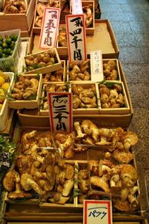 nishiki_market_matsutake_19