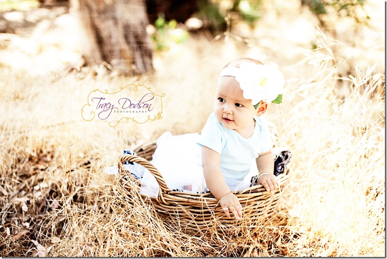 baby basket photography
