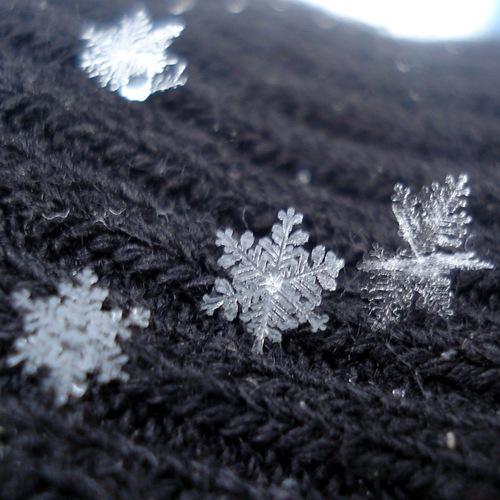 snowflakes_by_sindarelf