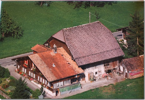 Day 5 Schwendiman party Suzi's picture of the old house