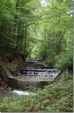 day 5 wissenbach falls (25)