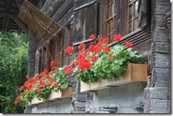 day 7 swiss open air museum (14)