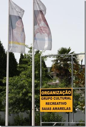 Carnaval_de_Verão_2010_002[1]