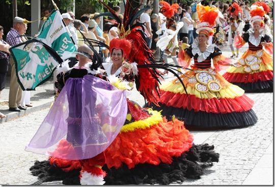 Carnaval_de_Verão_2010_054[1]
