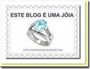 este_blog_e_uma_joia