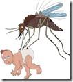 mosquito baby