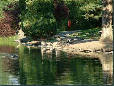 Park Lake 24-08-2003 031