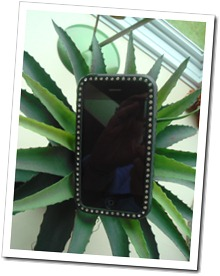 IphoneCaseDSC02900