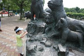 來到野生動物園,拿著園區地圖向老虎兄問個路。