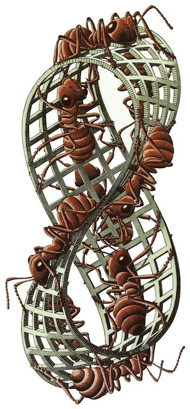 m.c. escher, mieren