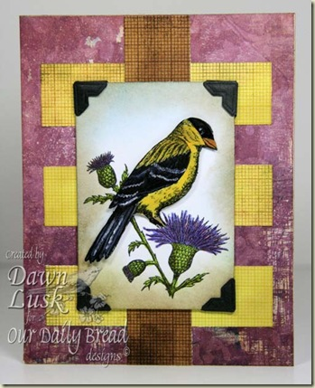 WT254 Goldfinch
