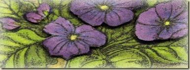 SC269 Violet blk