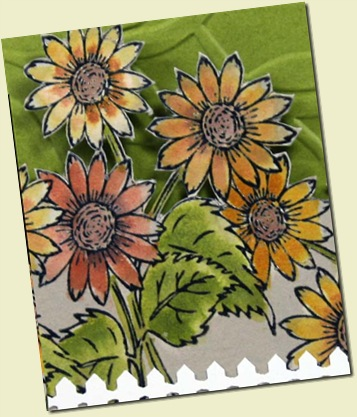 Sunflower Garden Peek