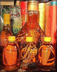 snake wine Vietnam