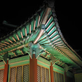 Korea Trips