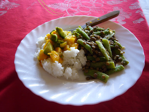 Rice with mango-avocado salsa served with a lentil and green bean salad.  Made with local produce.