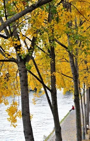 Fall Quay