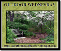 outdoor wedasoutherndaydreamer