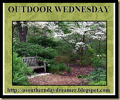 outdoor wedasoutherndaydreamer
