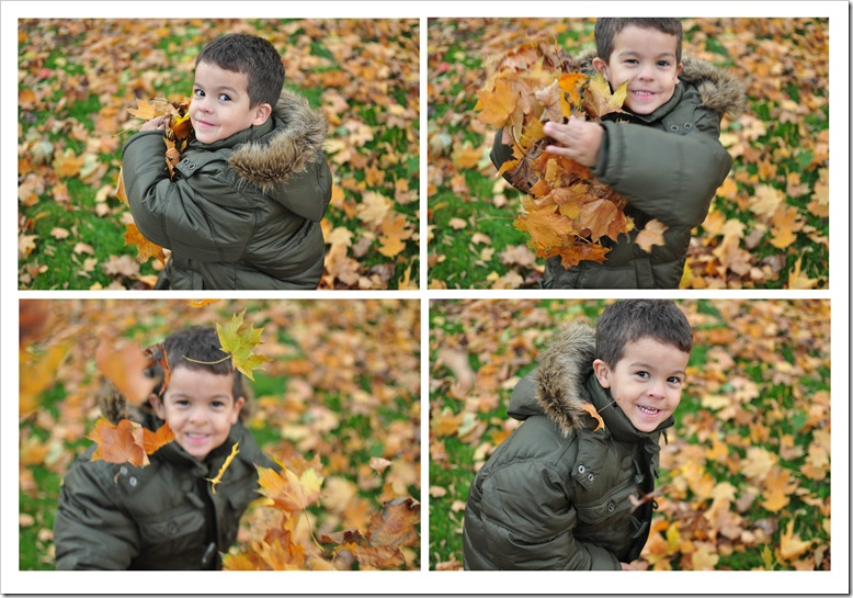 jed with leaves