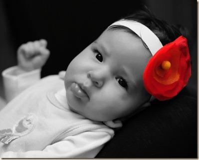 model-red-black-and-white-flower