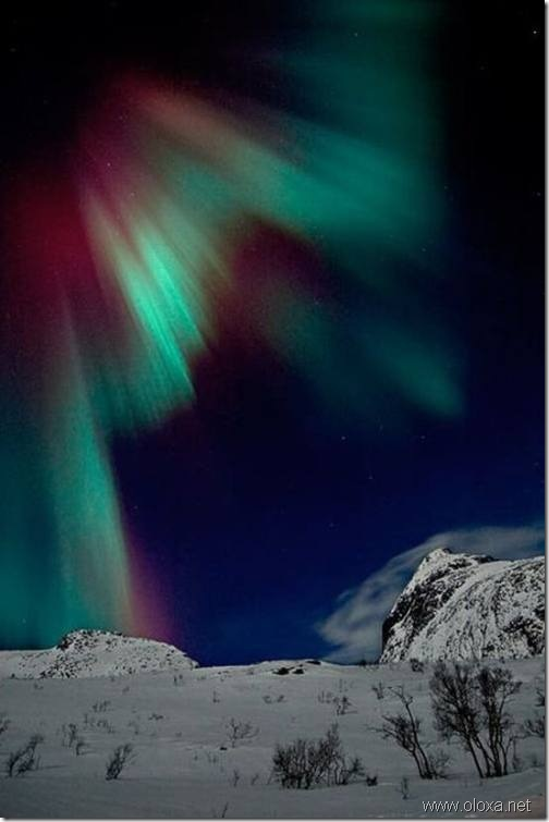 aurora-north-pole-1