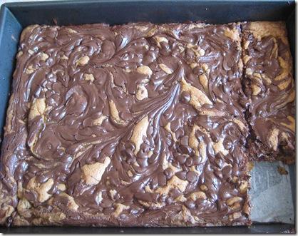 Chocolate Swirl squares4