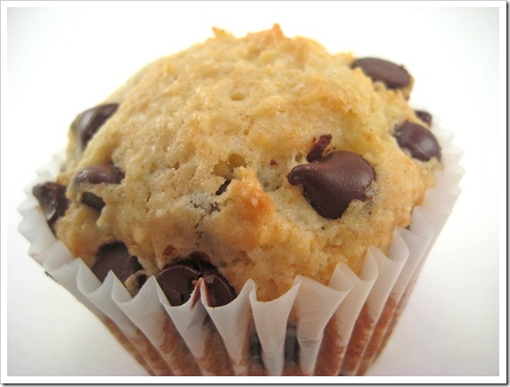 Chocolate chip muffin1