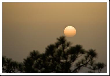 Puesta de sol en tamadaba