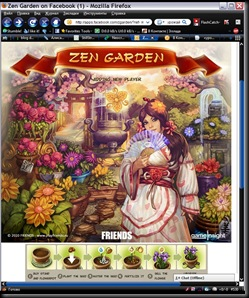 "New facebook game ""zen garden"" – a new star or a new fail?"