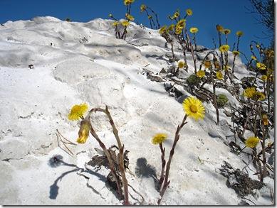 Vårtur i Kvanndalen 007