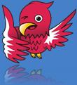 Garuda os 2011