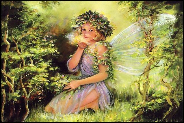 fairy49