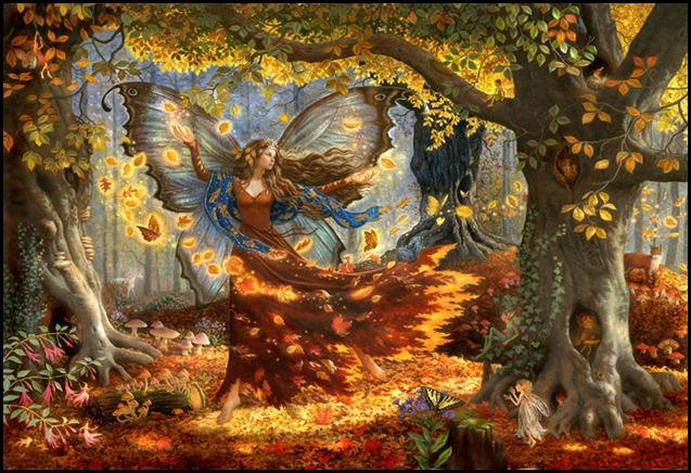 fairy53