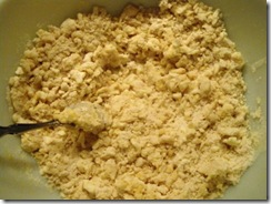 pie crust dough 1