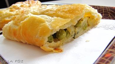 currystaska1