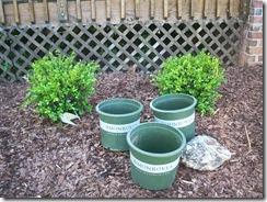 Flower Pots 034