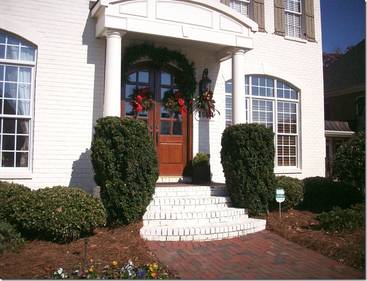Holiday Home Tour 2010 002
