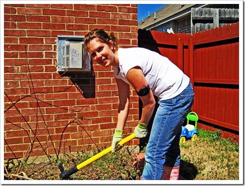 gardening 2010 003