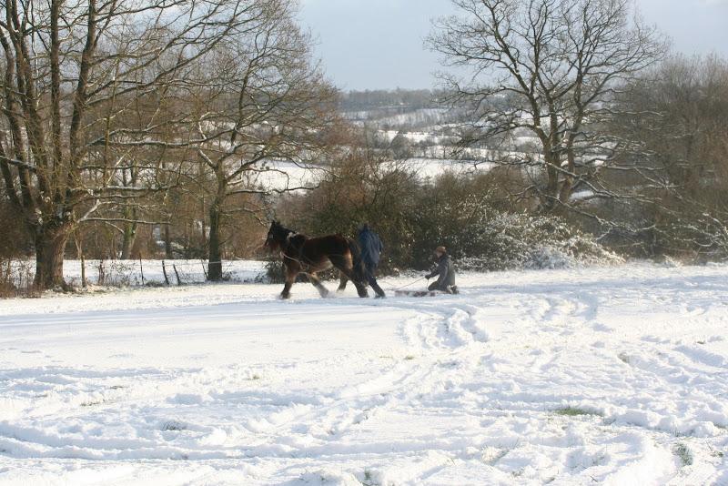 Le  calvados sous la neige... les chevaux s'éclatent! IMG_5190