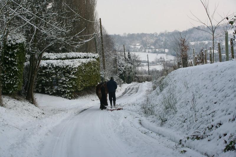 Le  calvados sous la neige... les chevaux s'éclatent! IMG_5115