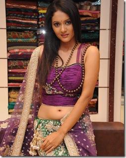 Rupahali Sarees