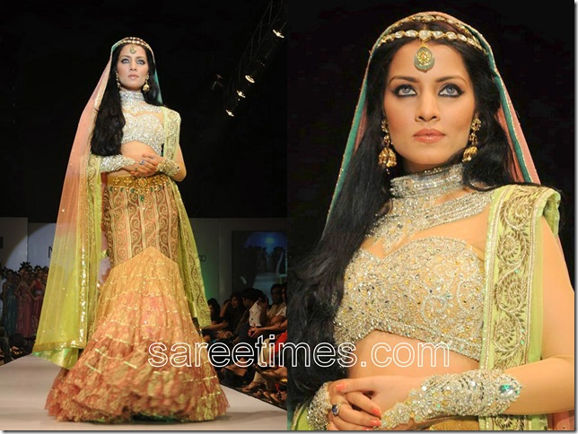 Celina-Jaitely-For-Neeta-Lulla-Hyderabad-Fashion-Week-2010