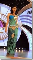 Miss Andhra Pradesh 2010 Contest-sarees (8)