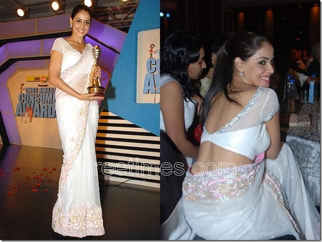 Genelia-Manish-Malhotra-Saree-sareetimes.com-sariblog