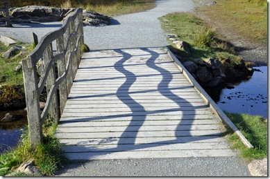 bridge at tarn hows with wavy shadows
