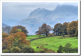 view from little langdale tarn to the langdale pikes