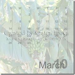 2010 Calendar12-007