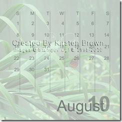 2010 Calendar12-017