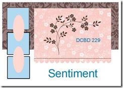 DCBD 229